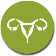 Gynekologie a urologie